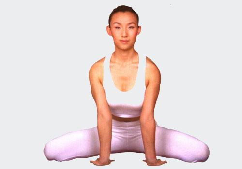 瑜伽初级体式——坐狮式
