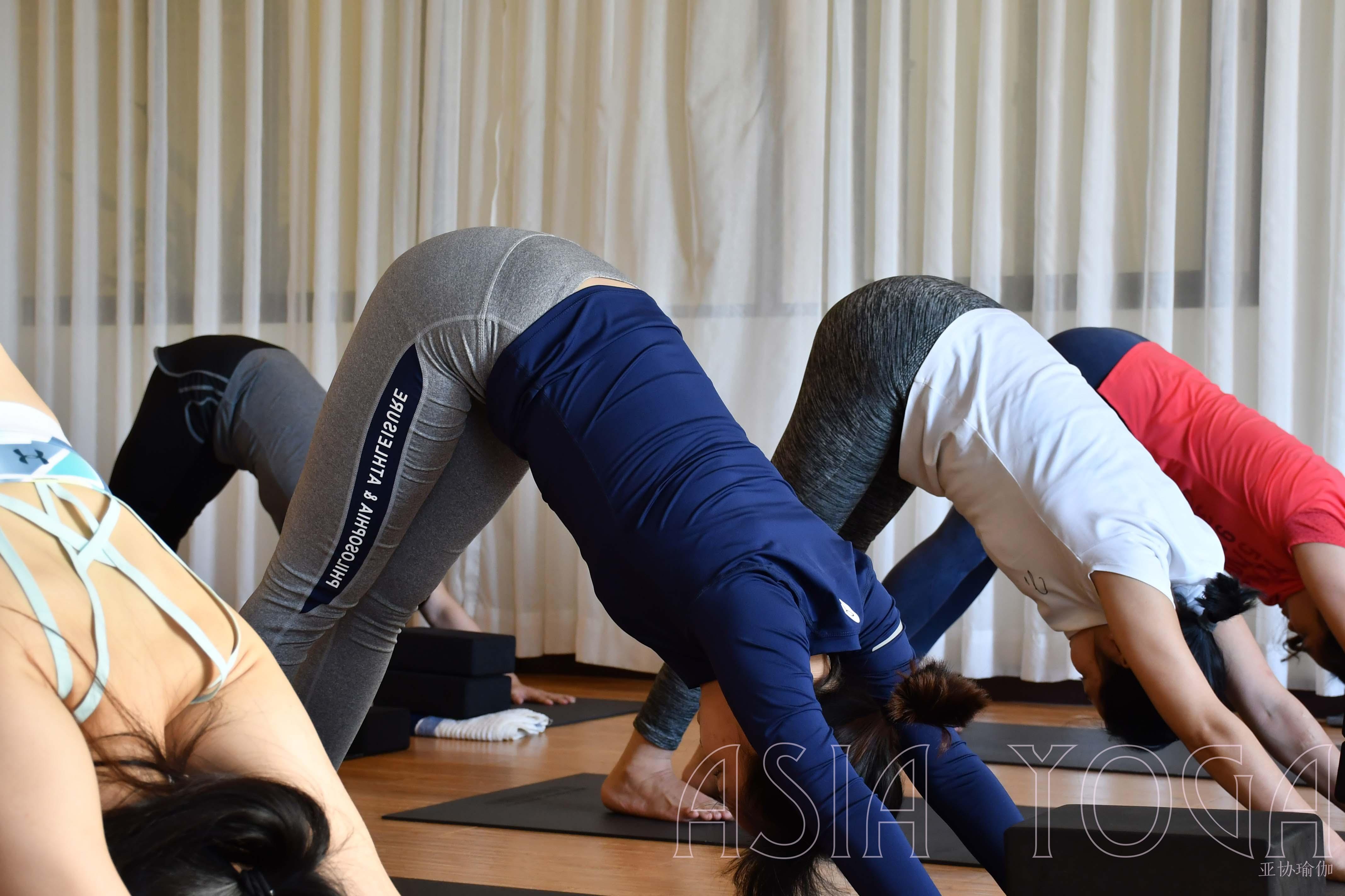瑜伽私教哪里好?懂得这些就不怕被坑