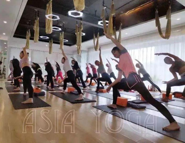 亚协瑜伽211届学员-学习总结心得分享